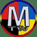 Мод Maidan Total War