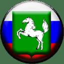Томская область (РФ)
