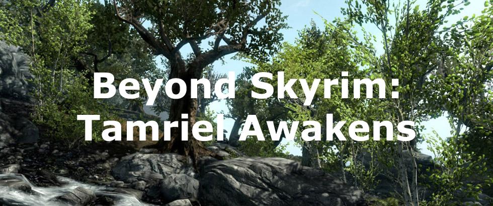 Beyond Skyrim: Tamriel Awakens