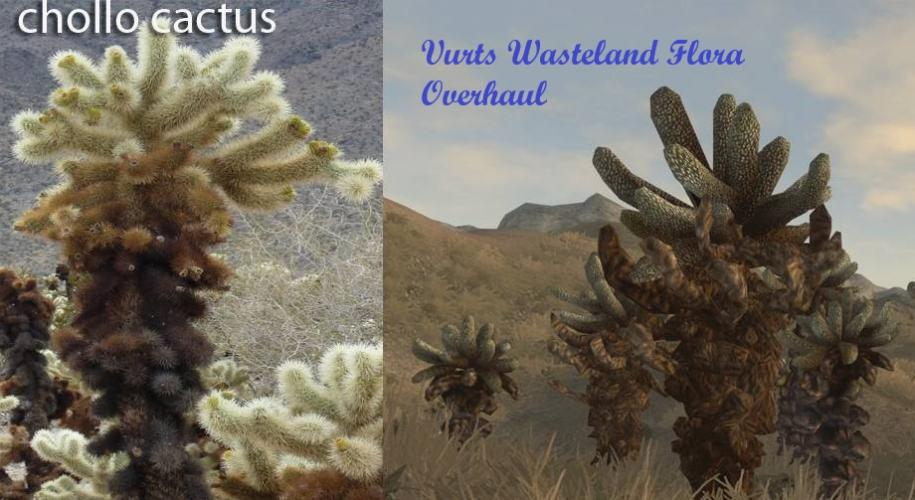 Vurts Wasteland Flora Overhaul